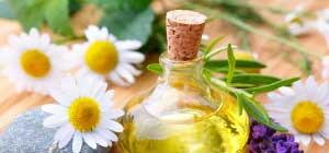 Pflanzen, Tabletten, Alkohol, verbinden, trennen, heilend, Tinktur, Gärprozess, Alchemie, Heilmittel, Paracelsus, Methode