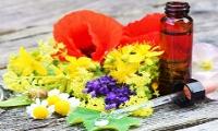 Seelenblüten, Heilpraktikerin Diepold, Batzhausen, Energie, Chakra, Balance, Transformation, Coaching, Schilddrüse, Nervensystem, Magenschmerzen